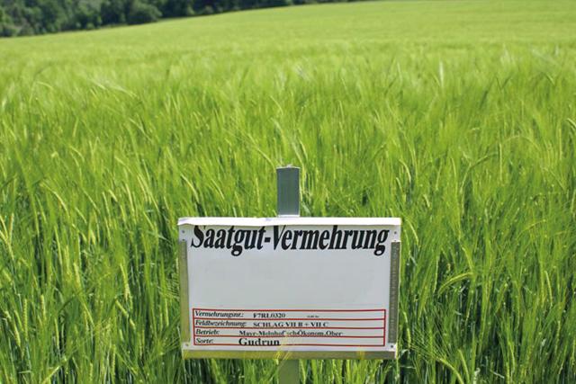 Etiketten auf der grünen Wiese – auch nach Monaten lesbar.